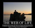 Example 6 Scenic Night Cove Screensaver